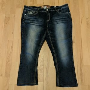 Hydraulics size 24 jeans Lola